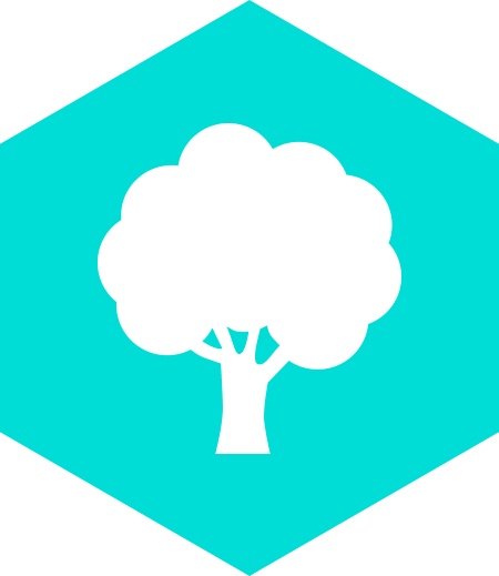 Boas Razões CEF – Natureza Envolvente